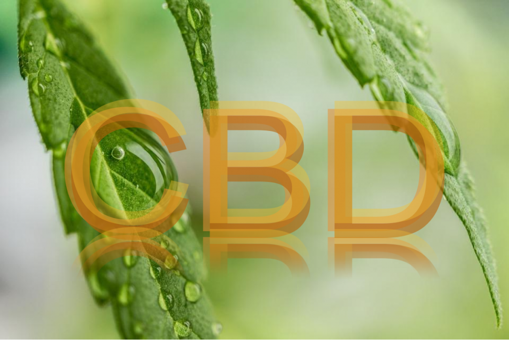 switch cbd treatment