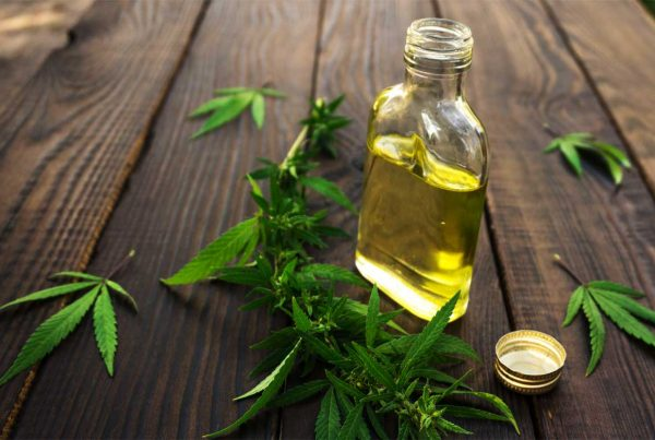 Benefits of CBD Oil for Your Body