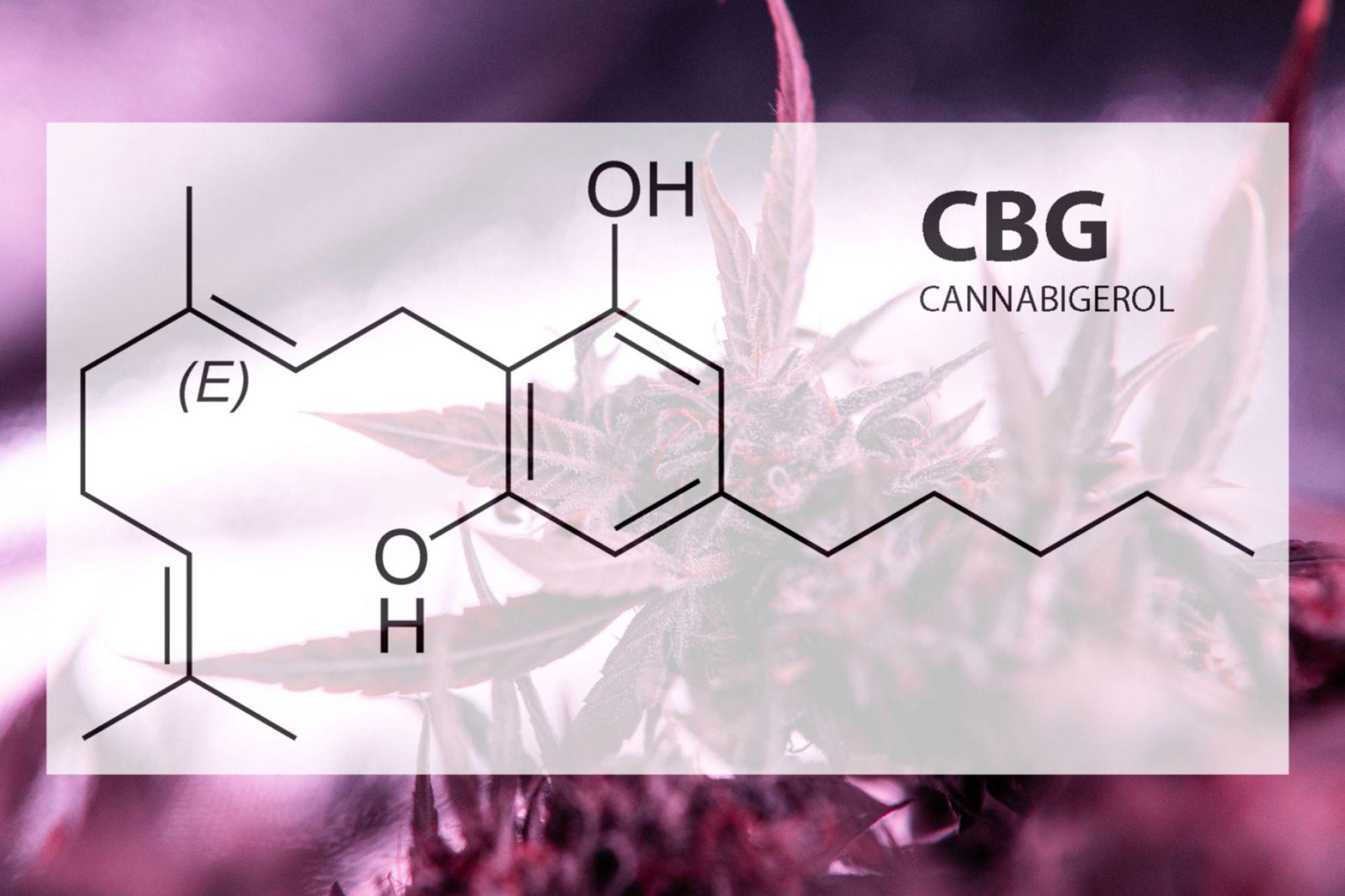 CBG Oil Benefits